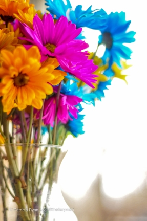 Vibrant, Crazy Daisies in clear vase