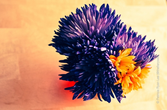 fresh purple flowers with orange daisies on wooden surface